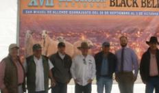Sorprende la calidad genética de los ovinos en San Miguel de Allende, Guanajuato